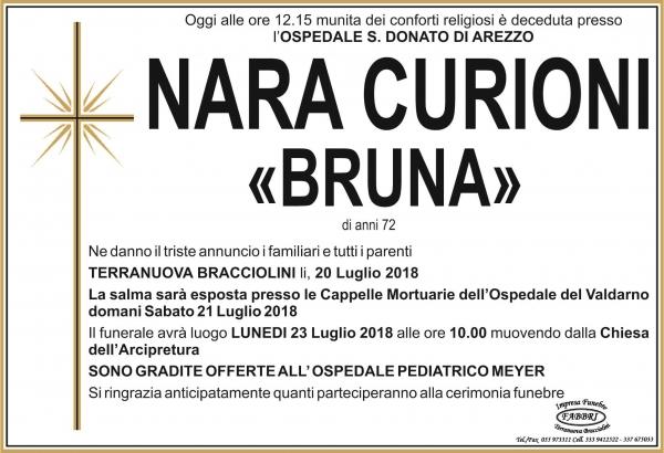 Nara Curioni