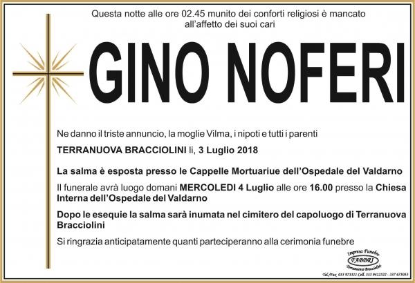 Gino Noferi