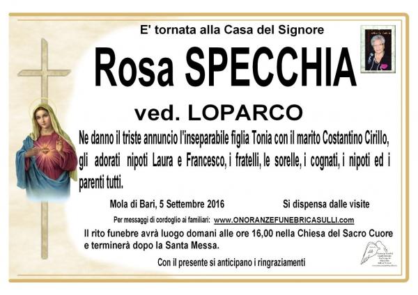 Rosa Specchia