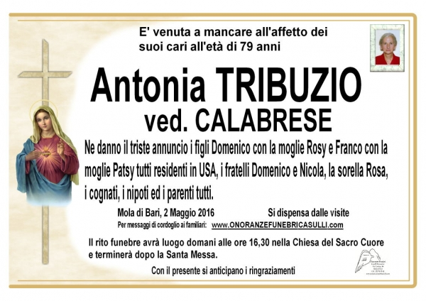 Antonia Tribuzio