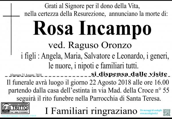 Rosa Incampo