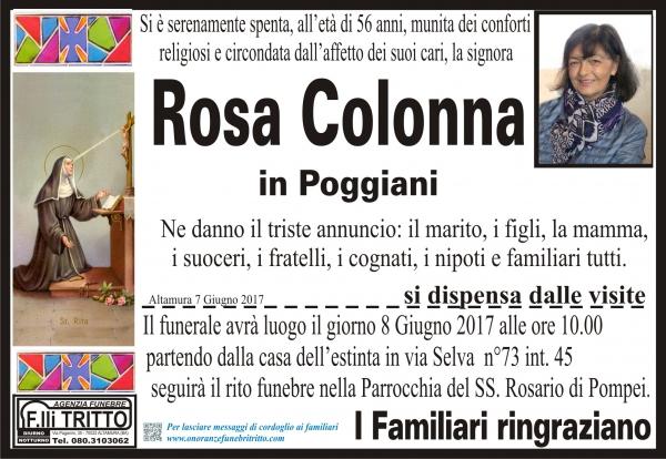ROSA COLONNA